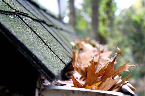 unclog  clean roof gutters drains  gutters
