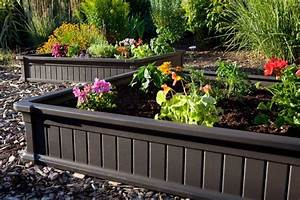 Raised Garden Bed Photos