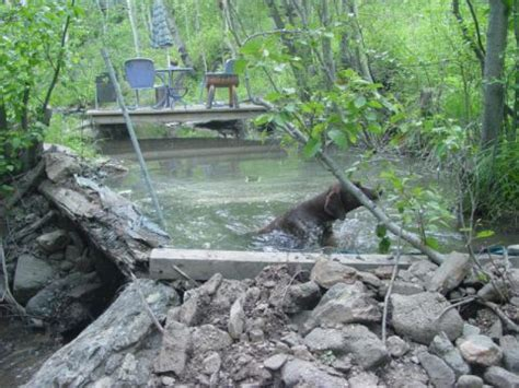 Мини гэс своими руками. hydroelectric in forest. автономная мини гэс халявное электричество в лесу youtube