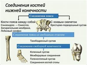 Могут ли болеть суставы из за нехватки кальция