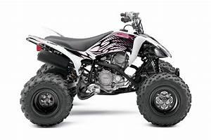 Yamaha Raptor 250 Specs - 2009  2010