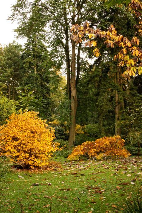 Botanischer Garten Ibbenbüren ibbenb 252 ren botanischer garten loismann muensterland de