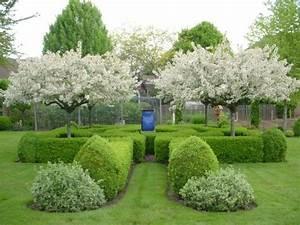 Immergrüne Sträucher Und Bäume : traditioneller englischer garten b ume zierkirsche ideen ~ Michelbontemps.com Haus und Dekorationen