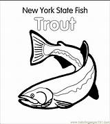 Coloring Trout Fish Pages State York Printable Colouring Fishing Brook Jumping Ny Brown Template Rainbow Drawing Stencil Stencils Coloringpages101 Drawings sketch template