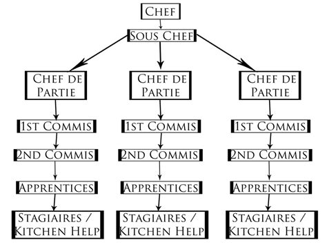 brigade de cuisine organigramme how professional kitchens work the commis