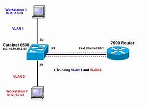 Configuring Isl And 802 1q Trunking Between A Catos Switch