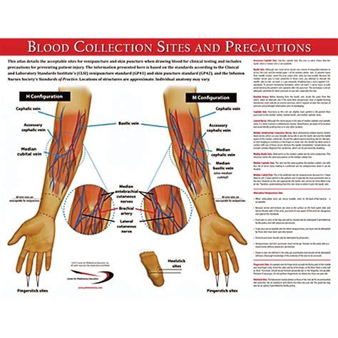 Blood Collection Sites Poster  Marketlab, Inc
