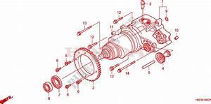 33 Honda Foreman 500 Parts Diagram