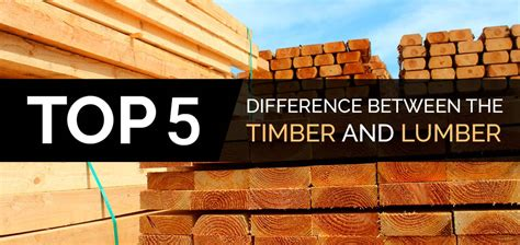 top  difference   timber  lumber