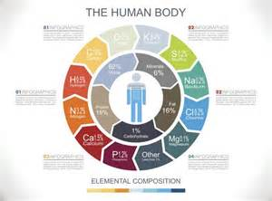 What Elements Are in the Human Body