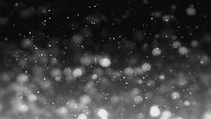 black and white snow gif | WiffleGif