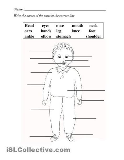 elementary printables  teachers  body definitions