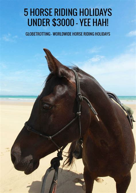 globetrotting riding horse holiday holidays won five