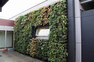 Humidité Mur Extérieur : mur v g tal ext rieur pour conf rer un attrait colo ~ Premium-room.com Idées de Décoration