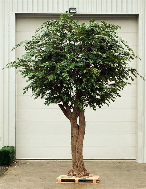 new developments in the fascinating world of large artificial trees