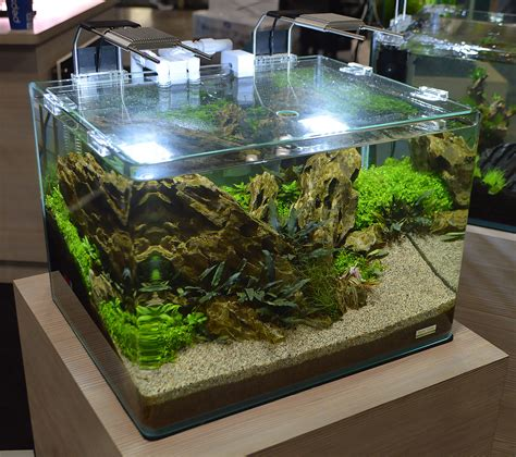 aquascape designs products freshwater tanks of the aquatic experience 2016 part 2