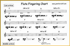 Fast  U0026 Foolproof Way To Learn Flute Notes For Beginners