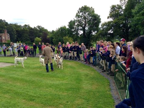 Working Dogs Badge Buddy Achievement Badge Buddies And Hunt Rides 187 South Staffordshire Hunt