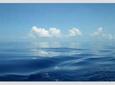 Studying Microbes in the Sargasso Sea The UCSB Current