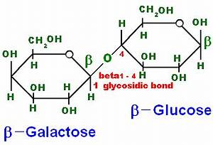 Case study- Lactose Intolerance – Biochemistry for Medics ...