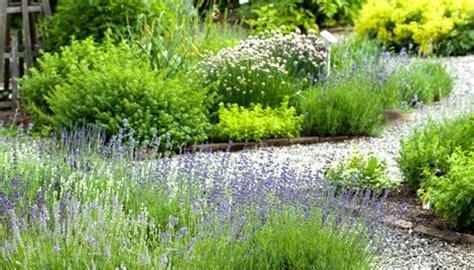 Kräuter Im Garten Wie Sie Die Gewürze Am Besten Anpflanzen