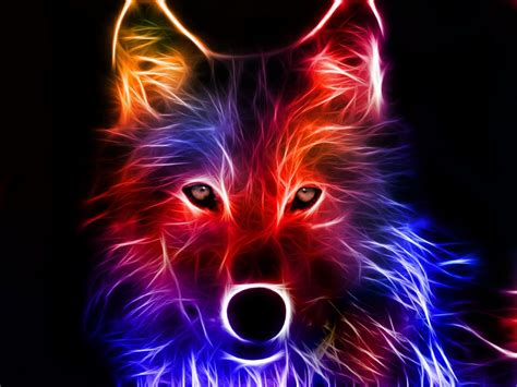 Glowing Animal Wallpaper - glowing wolf wallpaper images wolf wallpaper