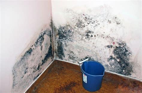 humidité plafond chambre les 25 meilleures idées de la catégorie humidité mur sur