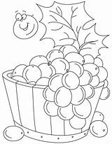 Coloring Pages Grapes Grape Vine Tub Clipart Pic Printable Getcolorings Fruit Library Popular Wine sketch template