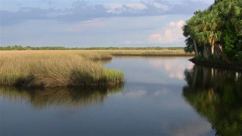 crystal river state park preserve learn