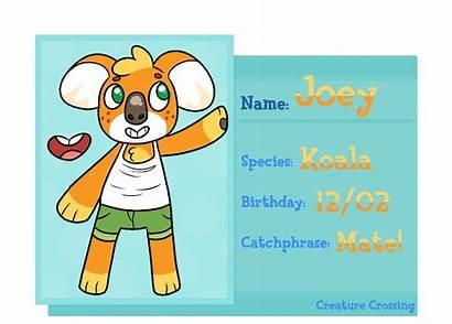 Joey Application Cc