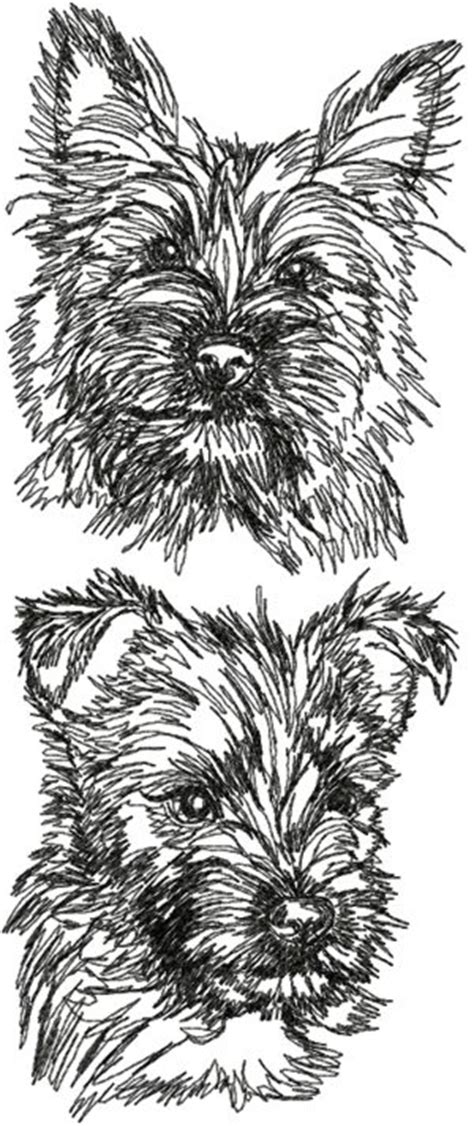 advanced embroidery designs cairn terrier set