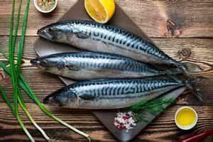 Omega 3 Fettsäuren Lebensmittel : i i die 10 lebensmittel mit den meisten omega 3 fetts uren ~ Frokenaadalensverden.com Haus und Dekorationen