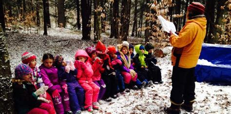 forest school  public school    natural
