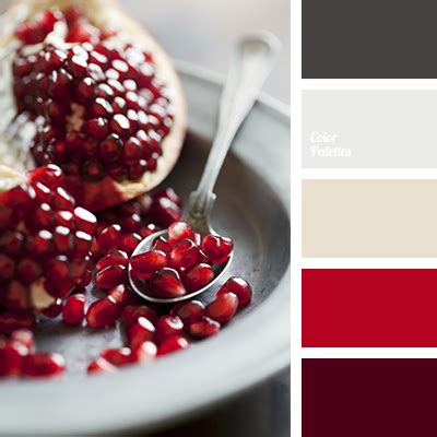 pomegranate color color of pomegranate seeds color palette ideas