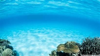 Underwater Summer 4k Desktop Wallpapers Uhd Ultra