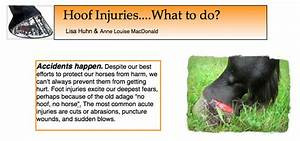 Hoof Injuries