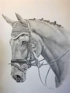 Pferdekopf Schwarz Weiß : bild pferd tier tierportrait grau von mario st el bei kunstnet ~ Watch28wear.com Haus und Dekorationen