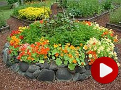 edible garden flowers and herbs images