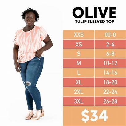 Olive Lularoe Chart Sizing Tulip Devin