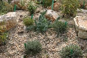 Gravier Pour Jardin : un joli jardin de gravier ~ Premium-room.com Idées de Décoration