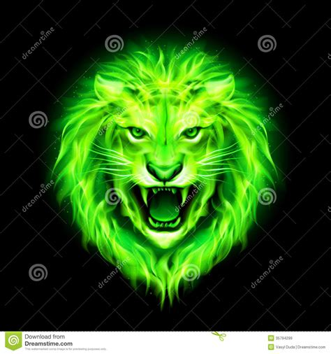 head  fire lion stock illustration illustration