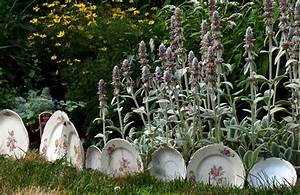 Kreative Ideen Garten : garten gestalten mit kreativer rasenkante und beetumrandung freshouse ~ Bigdaddyawards.com Haus und Dekorationen