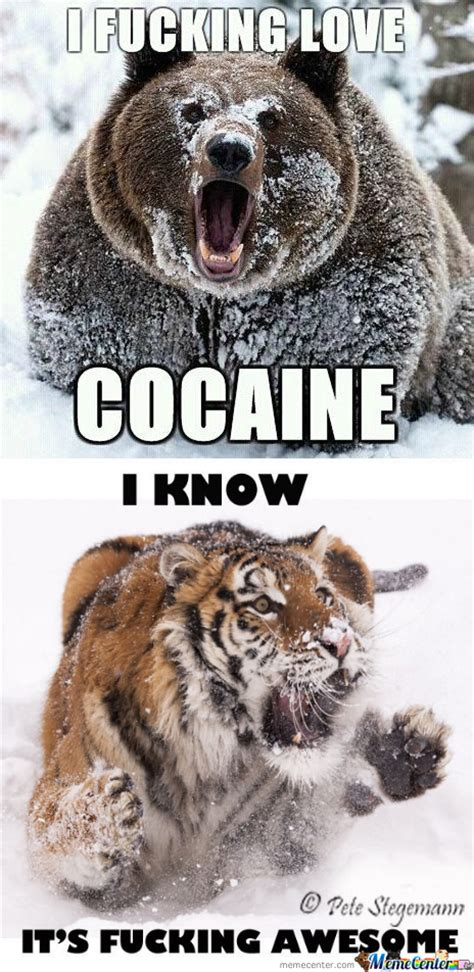 Bear Cocaine Meme - rmx cocaine by recyclebin meme center