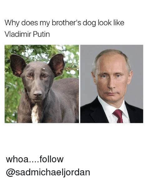Why Does My Brother's Dog Look Like Vladimir Putin. High Yield Ira Cd Rates Lawyers In Pittsburgh. Texas Renters Insurance Audi A5 Leasing Deals. Material Science Engineering Salary. Online Paralegal Programs In Florida. San Francisco School Of The Arts. How Do You Get Into The Stock Market. Chicago Video Production Company. Online Courses Computer Science