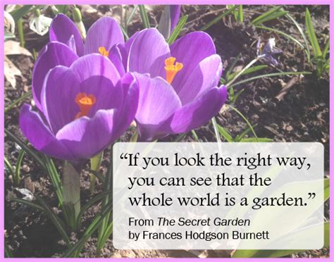 Garden Quotes About Life. Quotesgram