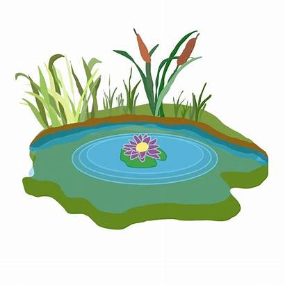 Pond Clip Clipart Swamp Vector Cliparts Svg