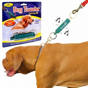 dog obedience trainer training aid puppy tweeter lead With dog training aids