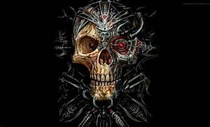 Evil Skulls On Fire | www.pixshark.com - Images Galleries ...