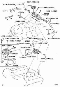 Toyota Sequoia Hose Assembly  Vacuum Switching Valve