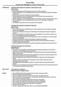 Information Risk Management Resume Samples